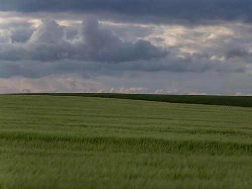 vacation field landscape denmark countryside holidays urlaub feld landschaft dänemark assens syddanmark