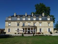 Morning sun at Chateau Pomys (St. Estèphe, France 2013)