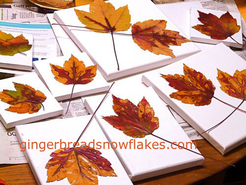 Preparations for mounting fall leaves on canvas