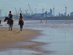 A view of Liverpool and Seaforth Docks from Crosby, Merseyside.