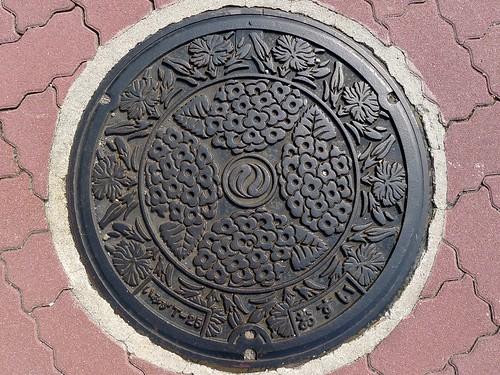 Imizu Toyama , manhole cover (富山県射水市のマンホール)