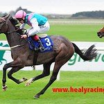 Irish Cesarewitch - Sunday 13th October 2013