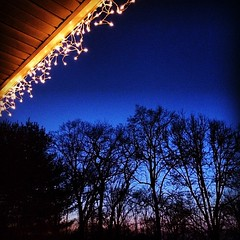 Icicle lights at dusk tonight.