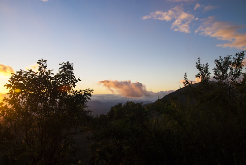 island view bluemountains jamaica caribbean cloudforest holywell bluemountainsnationalpark hardwargap