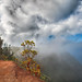 Waimea Canyon Cloud by SemiCharmedLife (☯)