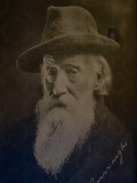 Category:John Burroughs