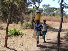 Zambia. Aldea entre Kasama y Mporokoso. La cabeza tiene ciertas utilidades