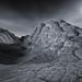 Collective Consciousness -- Vermillion Cliffs Wilderness, AZ by Jeff Swanson -- www.interfacingnature.com