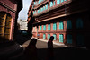 blog_bikaner_haveli-8429