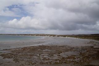 103 Gypsy Cove