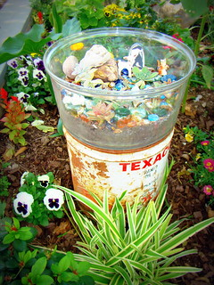 Dave's old Texaco drum with my terrarium on top