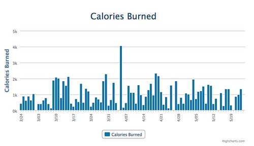 2014 Calories Burned in Exercise