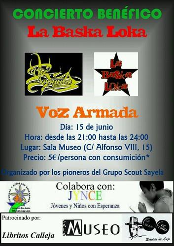 Concierto solidario 15 de junio
