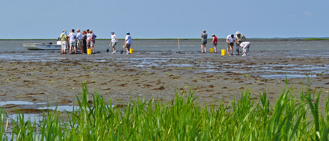 Master Naturalists on the Flats (5)