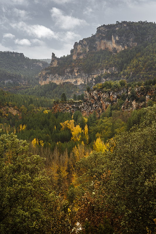 Otoño en el Alto Tajo, cerca de Zaorejas. Autor, Elfer