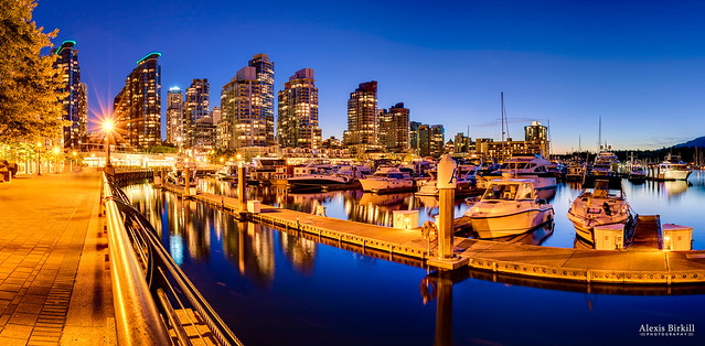 Coal Harbour Reflections