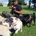 Pug Sundays SF by c3white