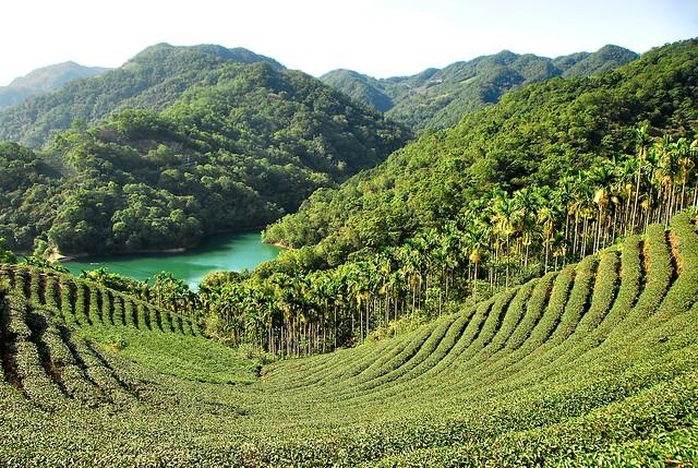 石碇塗潭公路(千島湖)
