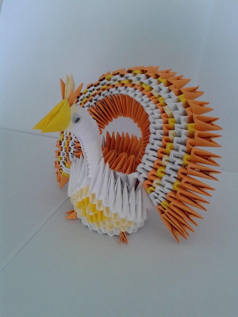 Circle Tail Peacock Orange Origam 3d
