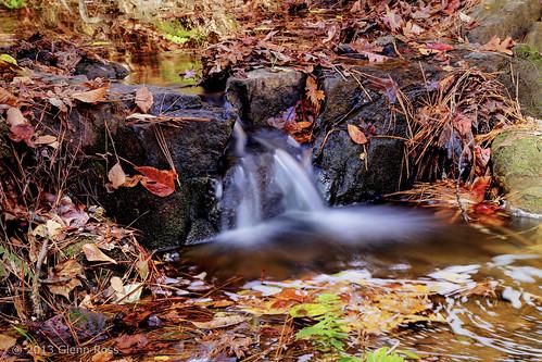 autumn sc waterfall woods branch unitedstates southcarolina rocky newberry