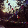 Prayer Flags in Winter Setting Sun