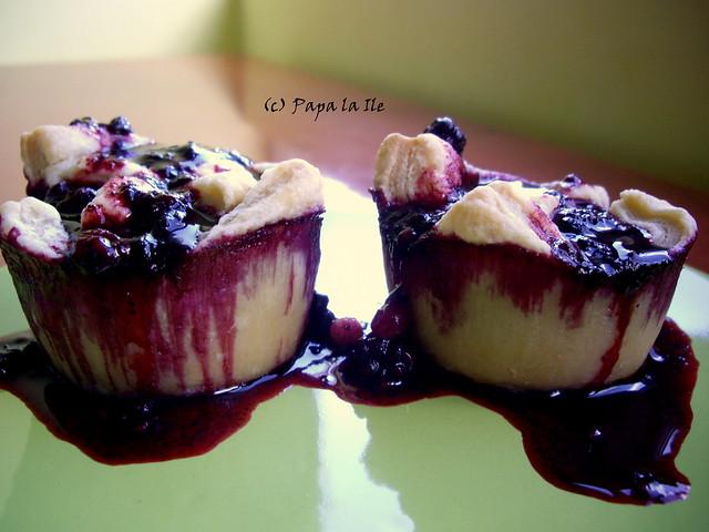Tarte cu fructe de padure (10)