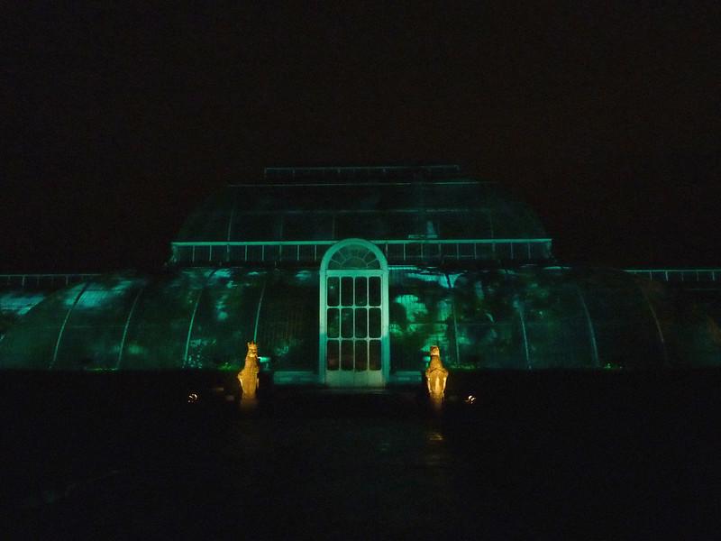 kew-gardens-after-dark-6