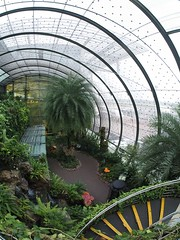 Sa, 28.12.13 - 11:25 - Schmetterlingshaus Changi Airport, Singapore