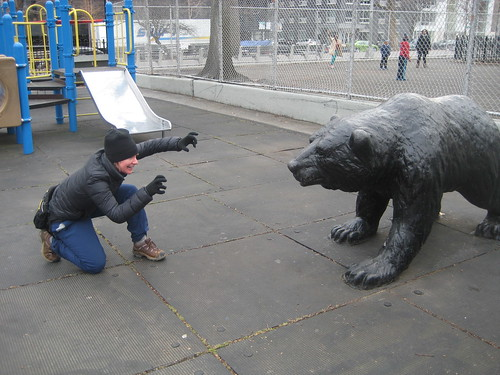Bear-fu