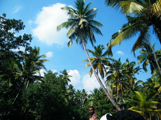 Rural Kollam, Kerala