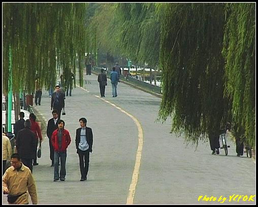 杭州 西湖 (其他景點) - 129 (從白堤的斷橋上看白堤)