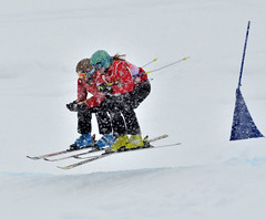 Alpine-SKiCross-Feb 23.14-William Snow-DSC_4173