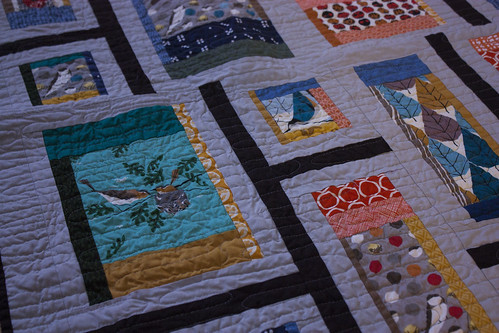 Rapid City Quilt in Charley Harper Fabric