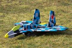 model aircraft(1.0), monoplane(1.0), sukhoi su-27(1.0), aviation(1.0), airplane(1.0), wing(1.0), vehicle(1.0), radio-controlled aircraft(1.0), radio-controlled toy(1.0), fighter aircraft(1.0), toy(1.0),