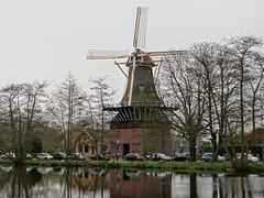 Kralingsplas molen De Ster