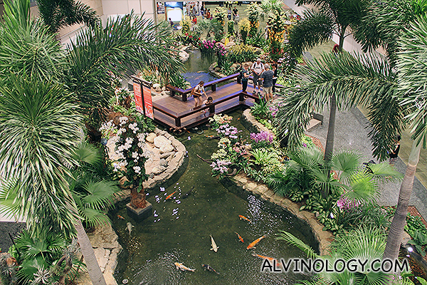 Aerial view of the Koi Pond