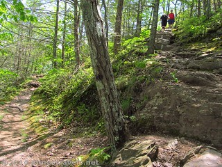 The tricky trail junction - left to the viewpoint, right for the Appalachian Trail to Mount Minsi, Delaware Water Gap National Recreation Area, Pennsylvania