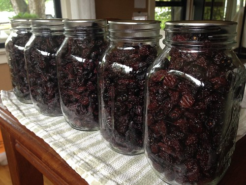 5 quarts of dried cherries