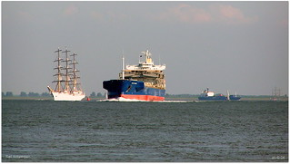 Sail Antwerpen 043a