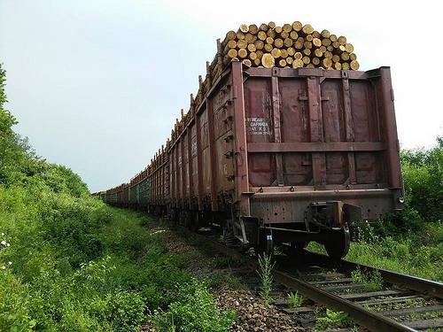 Інформація про випадки травмування дітей на залізниці, що трапилися внаслідок порушення Правил безпеки громадян на залізничному транспорті України