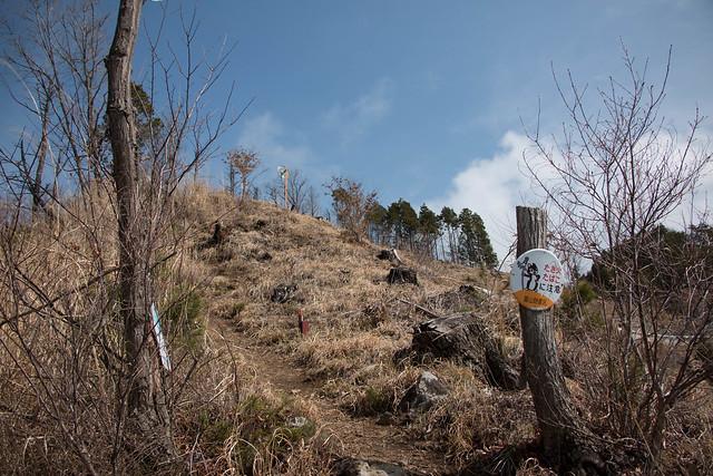 20150412-甲州高尾山-0149.jpg