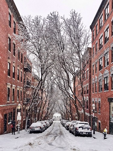 boston seasons massachusetts newengland seasonal eastcoast beaconhill snowstorm cold fallingsnow winter iphone6s lightroommobile iphoneraw iphone trees bicycle winterstormstella street symmetry