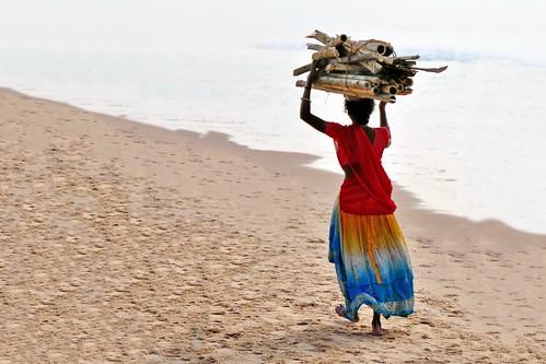 India - Odisha - Puri - Woman Carrying Wood - 4dd