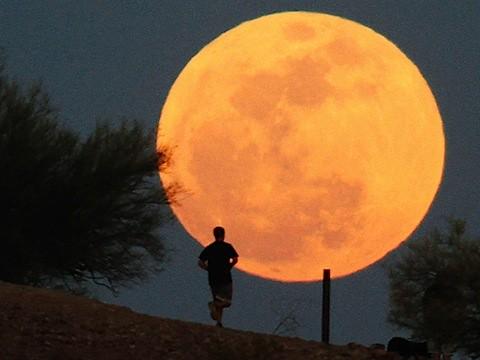 ss-120505-moon-tease.photoblog600.jpg