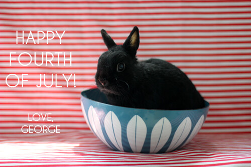 Happy Fourth of July! by Jeni Baker