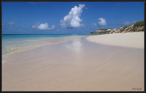 sea mare caraibi