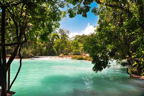 Cascadas de Agua Azul (15)