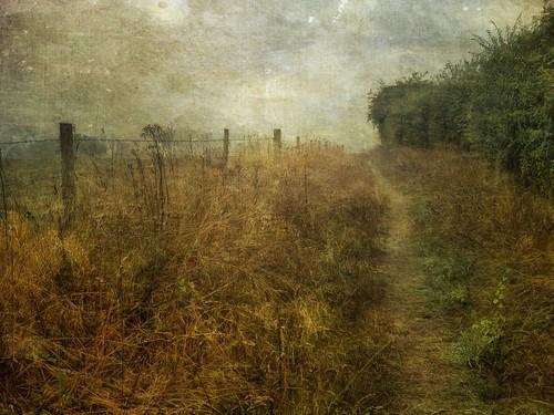 Towards the River by Sarah Jarrett