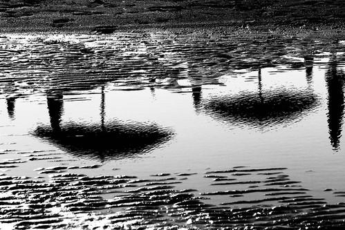 Riflesso nero di china.. by Claudio61 una foto ferma un ricordo nel tempo