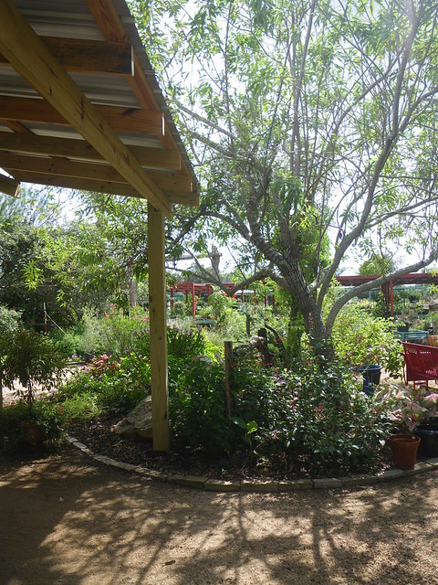 Enchanted Gardens --- Richmond, Texas
